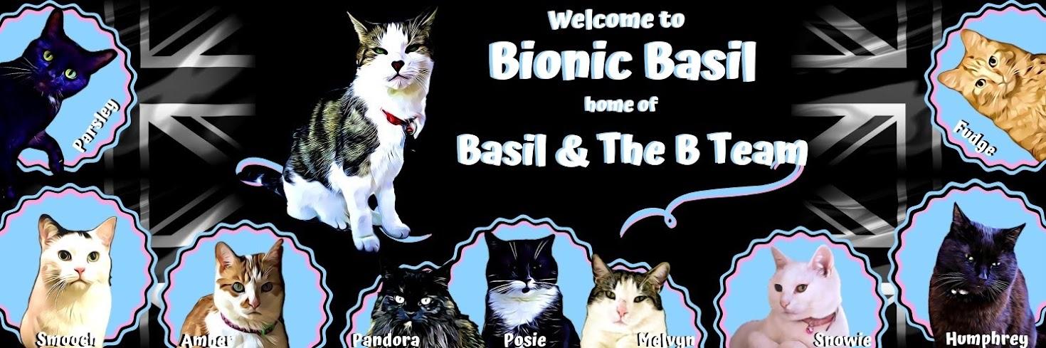 Basil's Blog