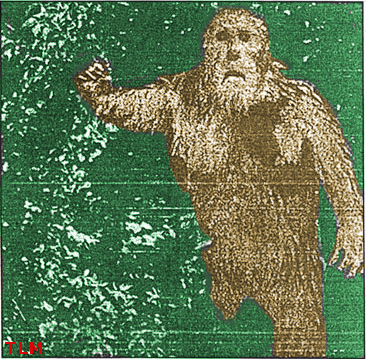 Legend of Big Muddy Monster