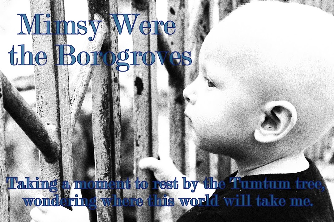 Mimsy Were The Borogroves