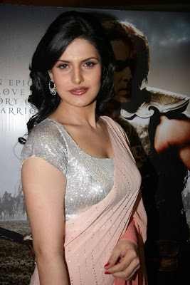 Bollywood Actress Zarine Khan Hot Saree Hq S