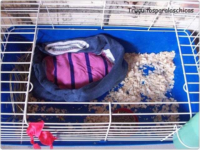 Diy cama para conejos enanos