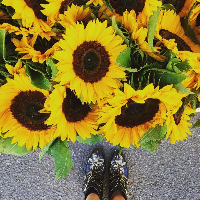 Chloe Susanna Boots and Sunflowers