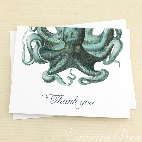 Octopus Thank You Notes from Concertina Press