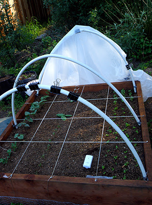 Hoop House with Cover Open