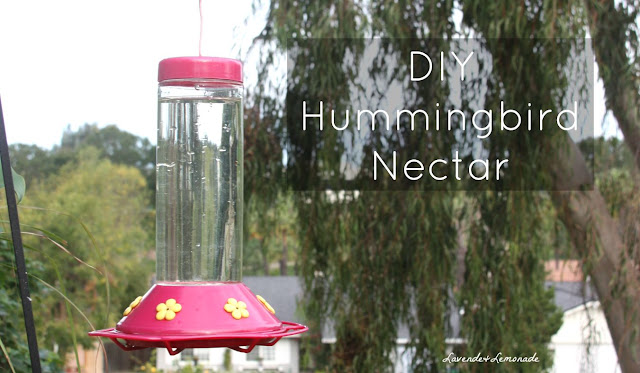 Make your own Hummingbird Nectar!  Simple DIY recipe