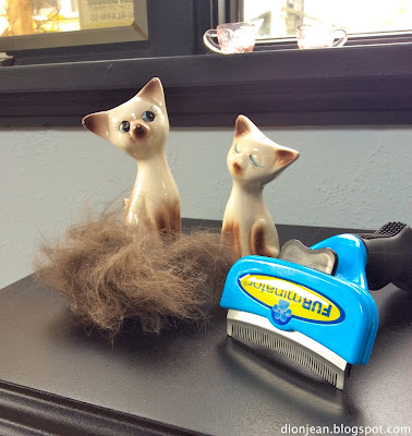 Troy's cat hair next to the Furminator