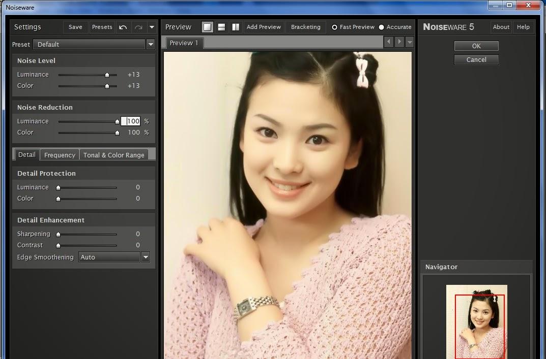 Noiseware Professional V4110 For Adobe Photoshoptorrent No2