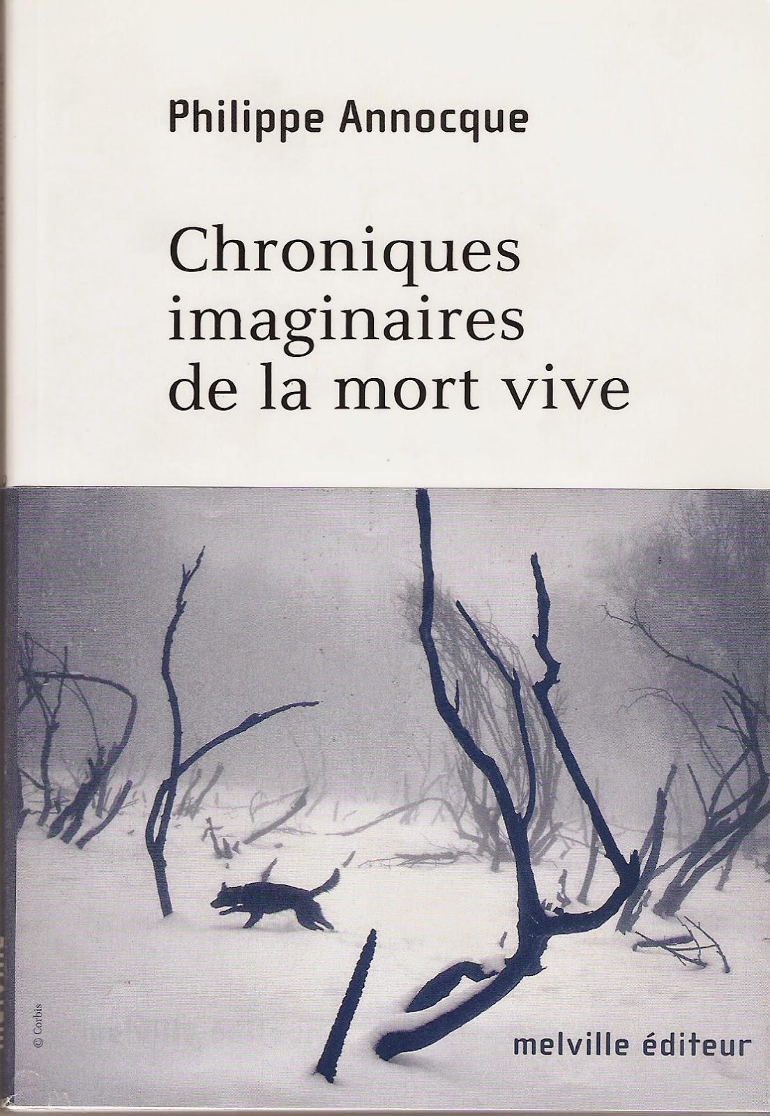 Chroniques imaginaires de la mort vive, Melville éd., 2005.