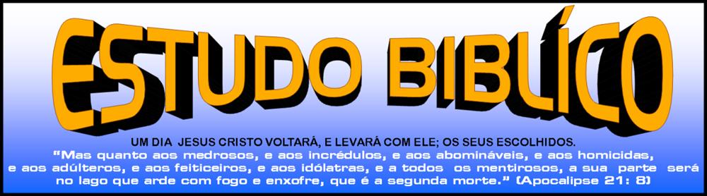 ESTUDO BILICO