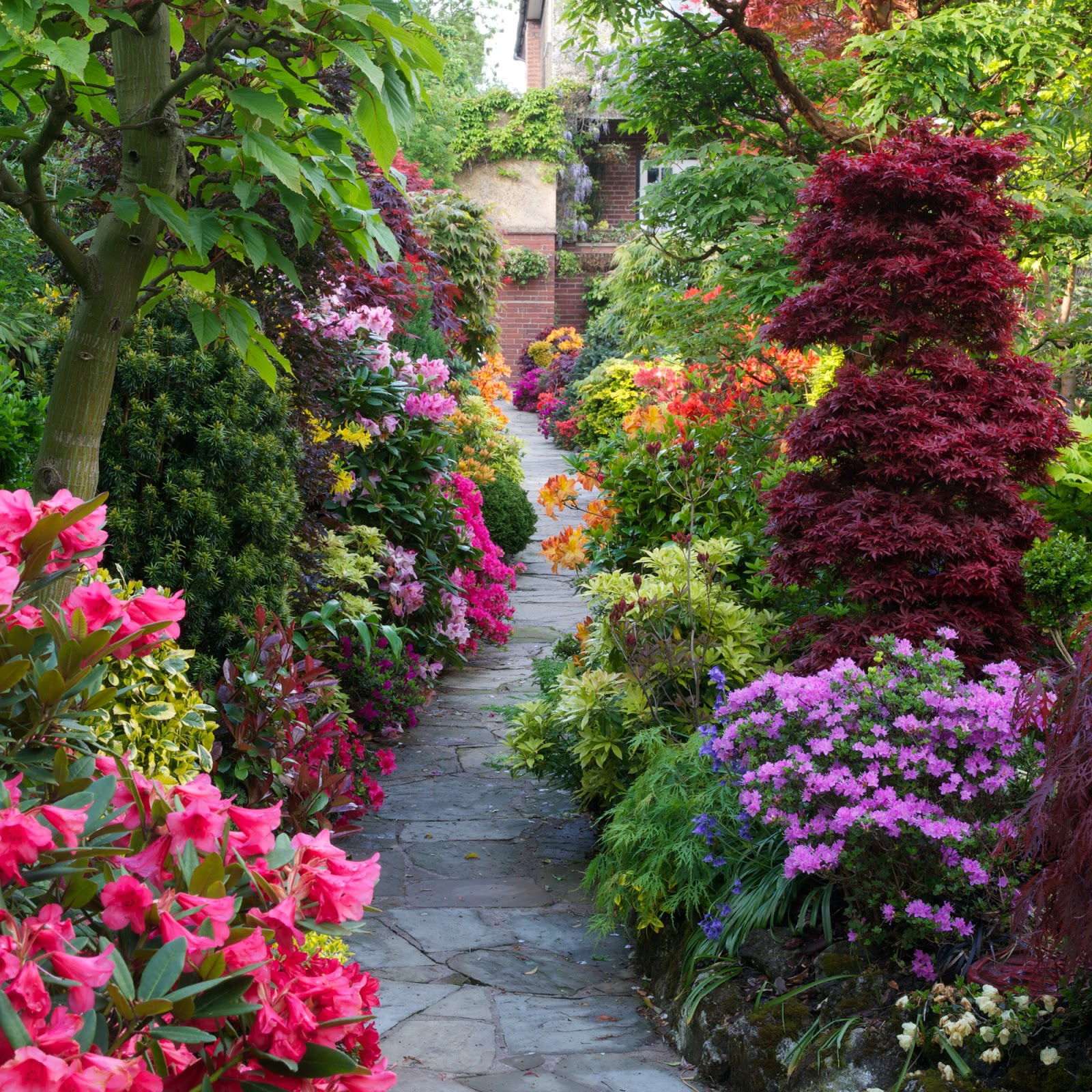 Drelis gardens four seasons garden the most beautiful for Beautiful flower landscapes