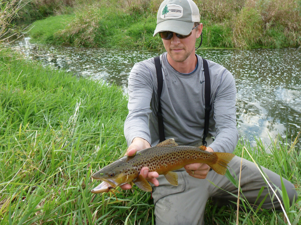 Currents good driftless fishing for Driftless fly fishing