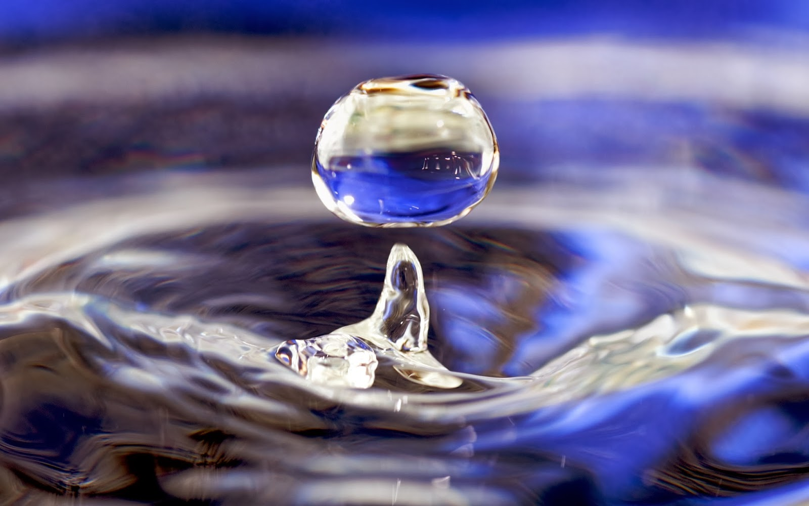 Water Drops Wallpapers