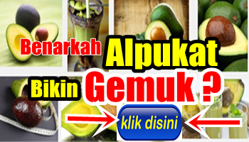 http://drozindonesiatranstv.blogspot.com/2015/04/fakta-tentang-alpukat-yang-bisa-bikin.html