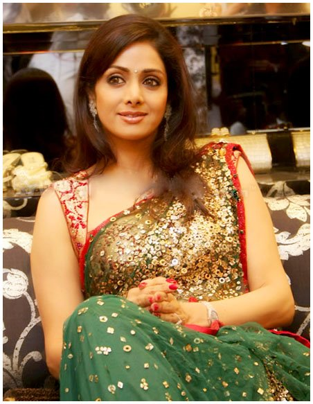 Actress Sridevi Hot Saree Photos