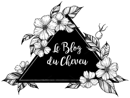Le blog du cheveu