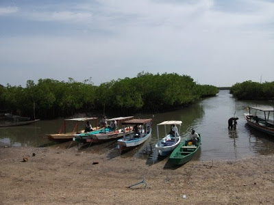 river gambia
