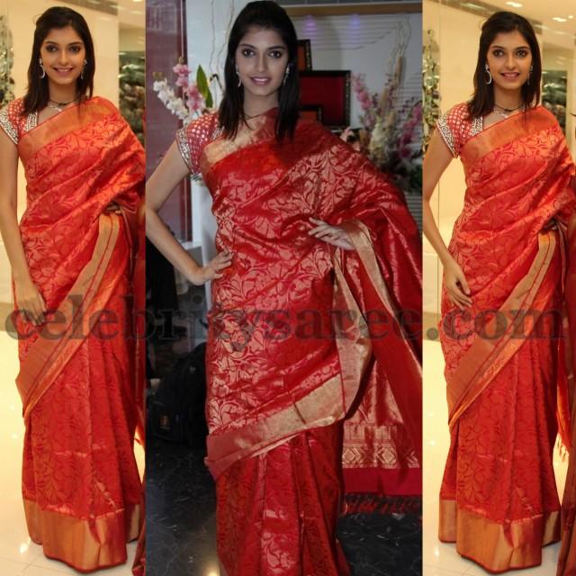 Models in Banarasi Sarees