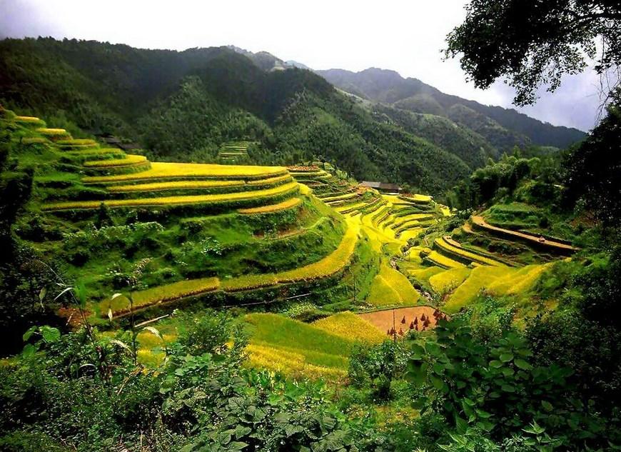 Fotografi Landscape Peringatan Hari lingkungan Hidup 10 Januari Mari Bersinergi dengan Alam mari bertani