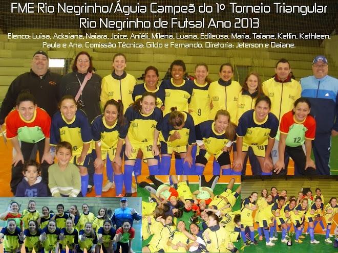CAMPEÃ INVICTA DO 1º TORNEIO TRIANGULAR RIO NEGRINHO DE FUTSAL 2013