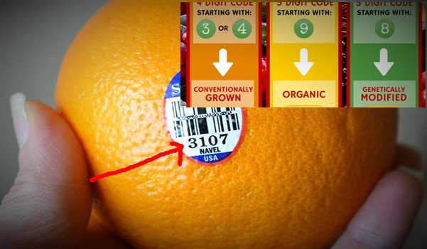 fruit labeling and otehr tags you need to be aware of