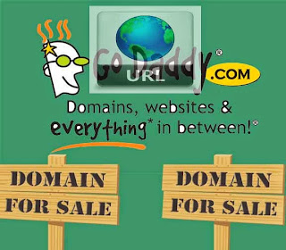 how to choose domain name in internet