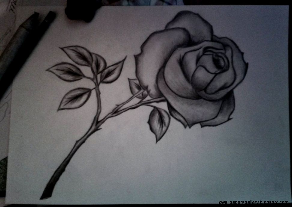 Pencil Drawings Of Flowers With Pictures  Bouquet Idea
