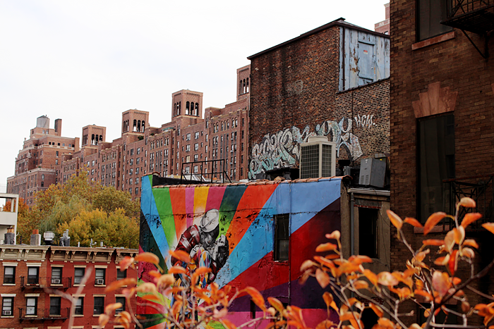 NYC New York High Line Park Walk