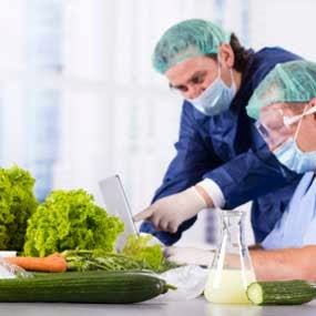 Bacteria And Foodborne Illness: Causes, Symptoms, Risk Factors, Complications, Diagnosis, Treatment, Prevention