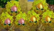 [Guía] Las frutas Melocotones