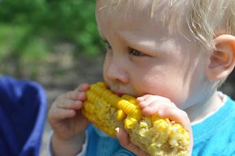 Wie wir Maiskolben perfekt zubereiten
