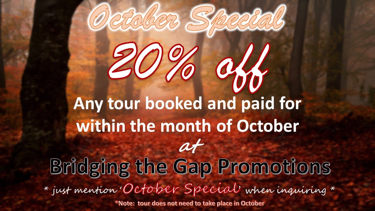 Bridging the Gap Promotions is having a sale!!