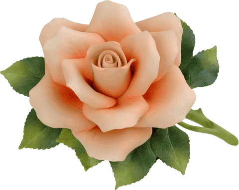 how to make peach roses