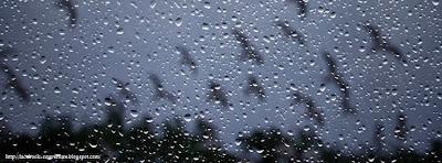 Couverture facebook originale pluie