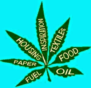 Nullifying Federal Ban On Industrial Hemp