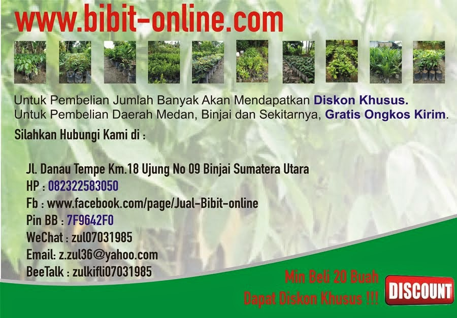 Visit to bibit online