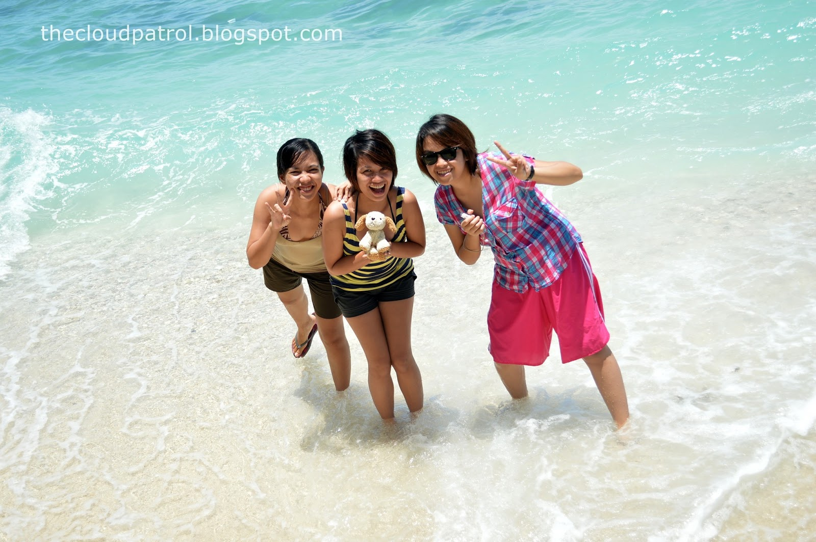 Butanding, whale shark, cebu, oslob, philippines, white sand, beach
