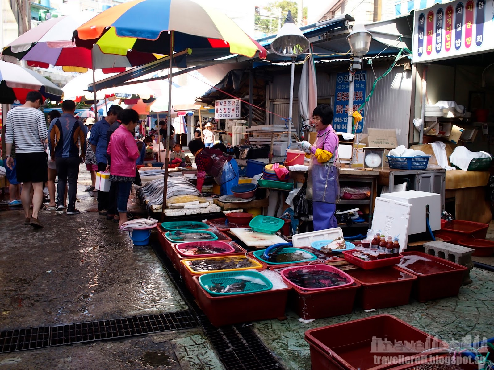 Tongyeong travels dongpirang mural village for Village fish market