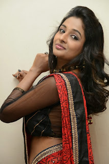 Actress Amitha Rao Pictures in Saree at Chandamama Kathalu Movie Press Meet 0045