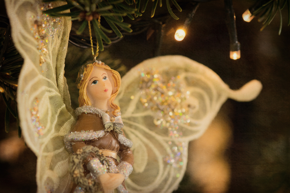 Weihnachtsbaum - Alle Jahre wieder