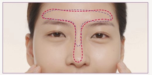 Makeup Zones, What is V Zone, U Zone, T Zone, Star Zone, C