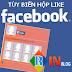 Hướng dẫn cách tạo, thêm hộp like (Like box) đẹp cho blogspot chuyên nghiệp