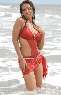 Pakhi Hegde Hot Bikini Photos, Pics, Images, Pictures, Stills