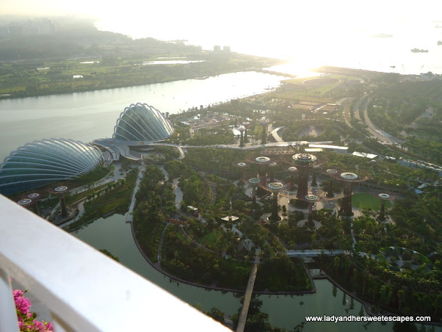 view of Gardens_by_the_Bay from Sky on 57 Singapore