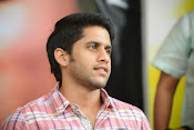 Naga Chaitanya photos-thumbnail-3