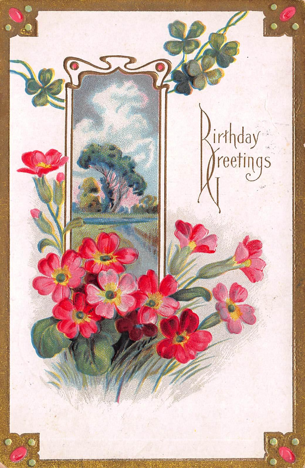 Olive Tree Genealogy Blog 1911 Birthday Postcard Jamestown New York
