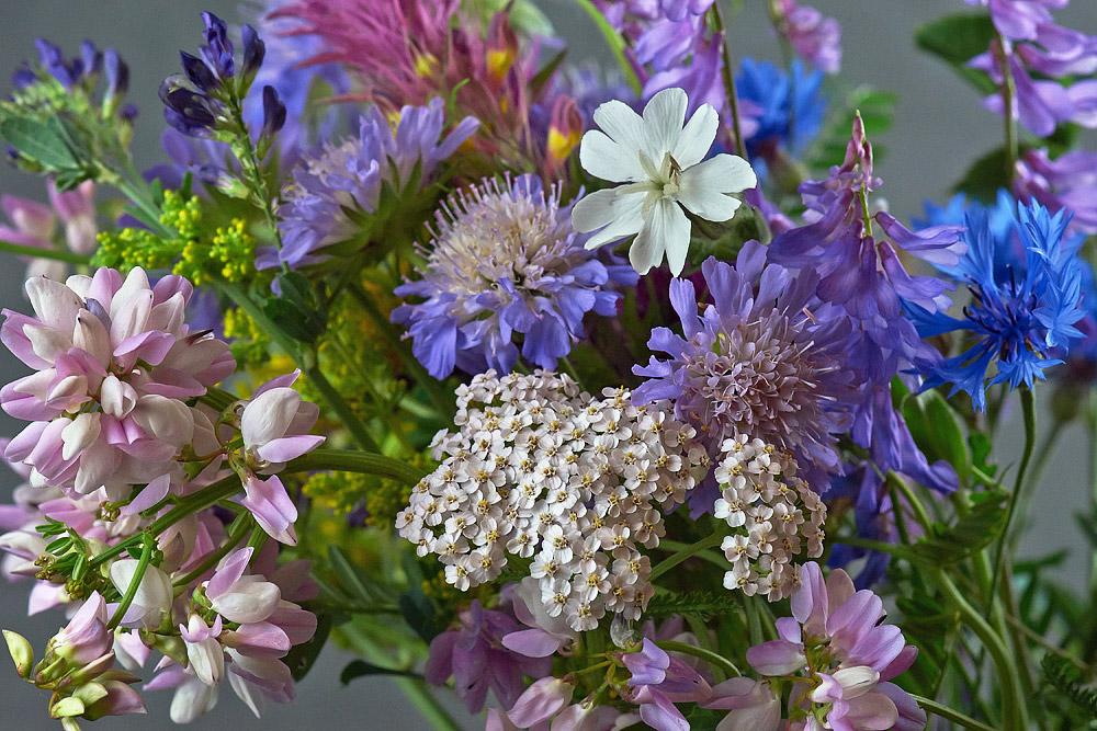 Fabuleux Un bouquet de fleurs sauvages XB57