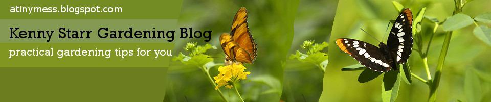 Kenny Stark Gardening Blog