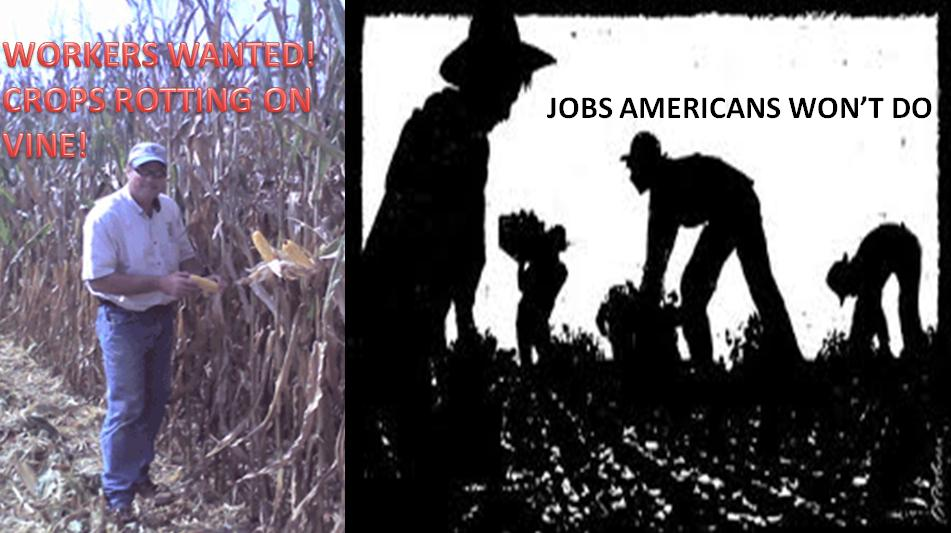 so mexicans are taking jobs from Does immigration harm working americans  that immigrants take the jobs of american-born citizens is something that  so the lawn service hires a bilingual mexican-american to supervise.