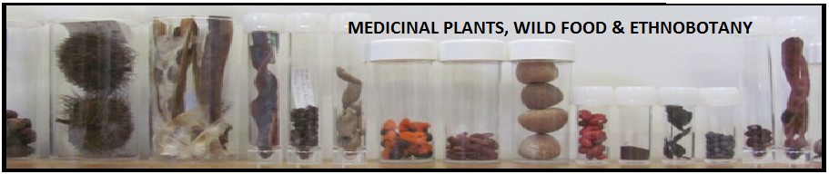Medicinal Plants, Wild Food and Ethnobotany