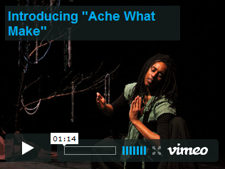 "Introducing ""Ache What Make"" Video"